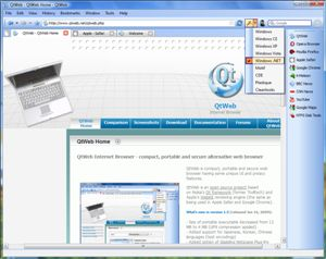 QtWeb web browser